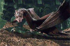 Smaug and Bilbo (gif set)