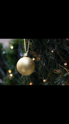 Christmas 🖤 With Nikon D3300