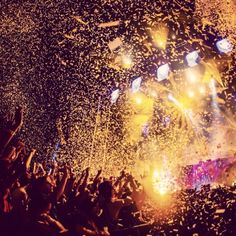 electric zoo canttt wait!! #ElectricZoo