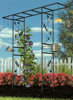 Panacea Bird Feeding Station Arbor:  Gorgeous arbor and it comes with a bath and several feeders.
