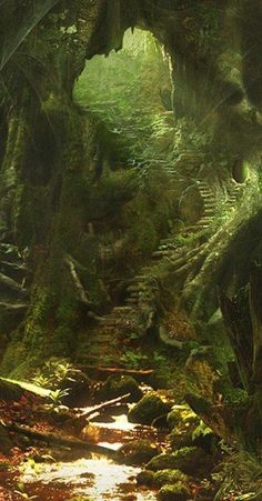 "This looks like the underground dwelling of the Tuatha de Danaan, or ""Children of Danu"", the mythological mother goddess of the Irish Celts. Creatures such as leprechauns and other Fairy Folk were known to inhabit these places, particularly under the buri Beautiful World, Beautiful Places, Beautiful Stairs, Simply Beautiful, Beautiful Pictures, Parcs, Fantasy Landscape, Abandoned Places, Abandoned Castles"