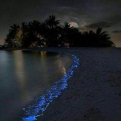 Vaadhoo Island, Maldives  l #PageVibe © Olga Schelgava