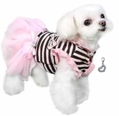5d4d100ba Darling Felicity Party Dress with Heart Charm - Color Pink Black Stripes Pet  Fashion