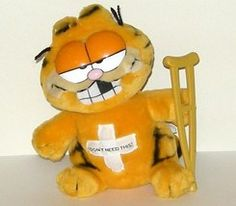 I wonder if Garfield's vet is a member of AAFP?