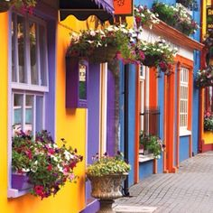 Scenic street in County Cork, Ireland. County Cork is where my Grandfather was born. Places Around The World, Oh The Places You'll Go, Places To Travel, Places To Visit, Around The Worlds, Travel Destinations, What A Wonderful World, Beautiful World, Beautiful Places