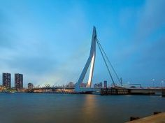 Rotterdam'da Gezilecek En İyi 10 Yer Rotterdam, San Francisco Skyline, Bridge, Travel, Viajes, Bridges, Destinations, Traveling, Bro