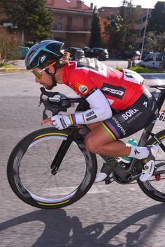 52nd TirrenoAdriatico 2017 / Stage 6  Peter SAGAN Red Points Jersey/ Ascoli Piceno Civitanova Marche /