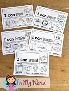 5 Senses Flip Books & Worksheets - In My World Kindergarten Reading Activities, Homeschool Kindergarten, Reading Resources, Preschool Activities, English Class, Teaching English, 5 Senses Worksheet, Senses Preschool, My Five Senses