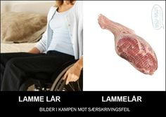 Just For Fun, Humor, Lamb, Pictures, Humour, Funny Photos, Funny Humor, Comedy, Lifting Humor