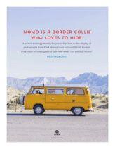 Find Momo Coast to Coast kit Border Collie, Coast, Kit, Activities, Gallery, Books, Livros, Roof Rack, Livres