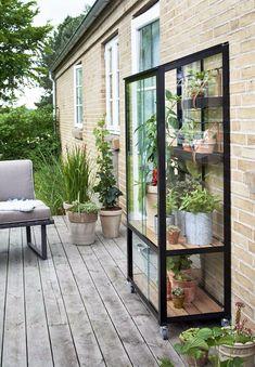 Trend: accumulation of objects for very deco Backyard Greenhouse, Greenhouse Plans, Backyard Patio, Homemade Greenhouse, Indoor Garden, Indoor Plants, Outdoor Gardens, Dream Garden, Home And Garden