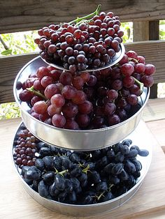 Grapes from Melissa's Produce - Champagne, Red Muscato, Black Muscato