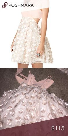 Nasty Gal Flower Dress Brand new never worn Nasty Gal pastel pink with 3D flowered. Adorable! Perfect for homecoming! Size xxs more pics to come. Nasty Gal Dresses