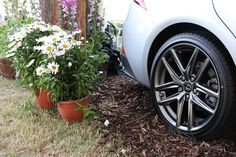 Flowers and a Lexus