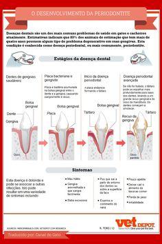 O desenvolvimento da periodontite