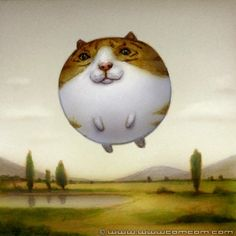 balloon-cat.jpg (400×400)