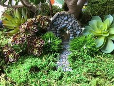 This little fairy garden door would be perfect nestled on the side of a moss hill. It comes with a wide stone surround with matching walkway. I added a silver bead to the door for accent. Style of bead will vary. So many fairy garden ideas with this door!  Provided in listing: Door 3 x 3.75 Matching walkway Made of resin. Any other items seen in picture are not included. Faux succulents are available in separate listing.  *** I combine shipping so be sure to check out my other items before…