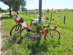 Juli_e_cycle devant une sculpture de fleurs et vélos, Sarre-Union #velo #bicyclette #veloelectrique #ebike #vae #tourdefrance #cyclingtour #cyclotourisme #RestartCycleTourism #france #frankreich #alsace #alsacebossue #sarre #saar #rencontre #treffen #sarreunion #cyclingtour #juli_e_cycle #velafrica