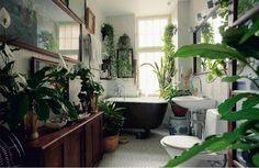 I love the bathroom plants--like a tropical rainforest