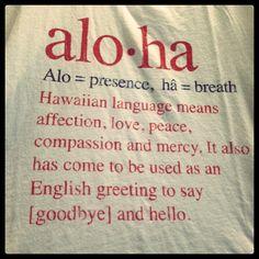Aloha Now by Discover Hawaii Tours