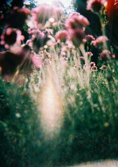 I really do heart flowersss <3