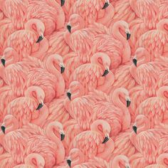 Retro Chic This Hip and Retro Chic Large Flamingo Wallpaper Can Add A Bit Of Cool To Many Rooms. Get Creative And Stand Out. A raised textured blown vinyl wall-covering featuring extravagant pink flam Pink Flamingo Wallpaper, Flamingo Art, Pink Flamingos, Flamingo Bathroom, Flamingo Tattoo, Flamingo Painting, Bathroom Pink, Mermaid Bathroom, Mirror Bathroom