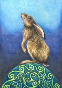 Moon gazing hare...