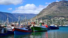 The best things to do in Cape Town? Explore these best attractions, sightseeing spots, fun activities, and other handpicked places to visit in Cape Town on this weekend. Know that most of the things to do are free or cheap. Stuff To Do, Things To Do, Cape Town South Africa, Table Mountain, Day Tours, Holiday Destinations, Fishing Boats, National Parks, Places To Visit