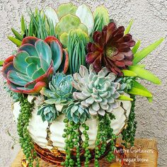 # all Natural container gardening in or out of house-had some similar planters before my kids were born & grew similar plants in them