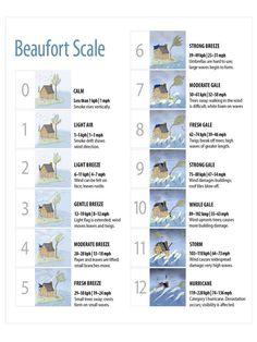 Beaufort Wind Scale Quiz   SAFTSE