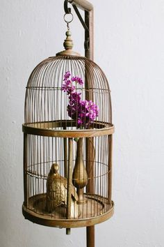 ‍♀️‍♀️Birdcages ‍♀️‍♀️More Pins Like This At FOSTERGINGER @ Pinterest ‍♂️