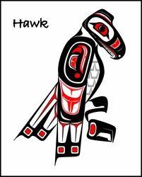 hawk - Haida Point Art
