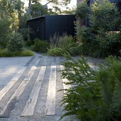 Beautiful lush layered planting with a driveway of sleepers and crushed rock. The perfect modern Australian garden! Country Landscaping, Garden Landscaping, Landscape Architecture, Landscape Design, Landscape Elements, Australian Native Garden, Minimalist Garden, Coastal Gardens, Coastal Cottage