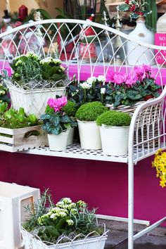 White Wrought Iron Bench Outside Beautiful Bright Pink Florist In Chelsea London | Amanda Austin Florist Kings Rd London