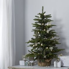 2245f9c75ed9e Fir Christmas Tree - from The White Company