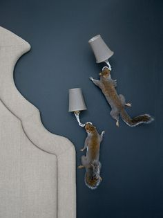 Squirrel Wall Lamps by Alex Randall. I super hope these are fake squirrels!