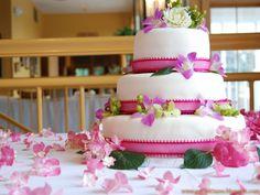 578 Best Happy Birthday Cake Images Happy Birthday Images Happy