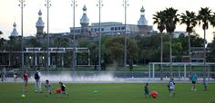 Top 5 parks in Tampa