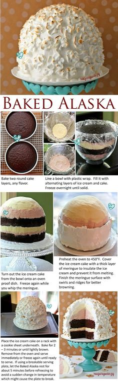 SugaryWinzy Baked Alaska Strawberry Ice Cream Chocolate Cake