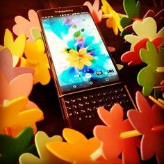 #inst10 #ReGram @doaasberry: How colourful your phone can be ?  #flowers #colorful #instapic #instalike #blackberry #priv #teamblackberry #BlackBerryClubs #BlackBerryPhotos #BBer #BlackBerryPRIV #PRIV #AndroidOS #Android #BlackBerry #BlackBerryGirls #Luxury #LuxuryPhone #Phone #SmartPhone