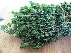 400 graines Fines Herbes-Héliotrope
