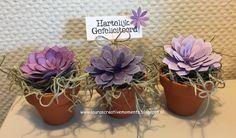 Nog een paar nieuwe creaties met de Succulent Garden snijmallen van Stampin' Up! ...