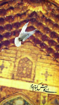 Imam Reza, Allah Wallpaper, Flower Phone Wallpaper, Muslim, Movie Posters, Film Posters, Billboard