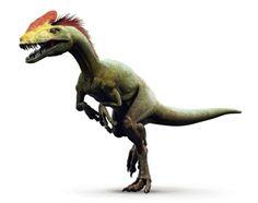 dinosauri veri - Cerca con Google