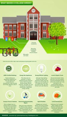 "20 MBA Programs That Are ""Going Green"""
