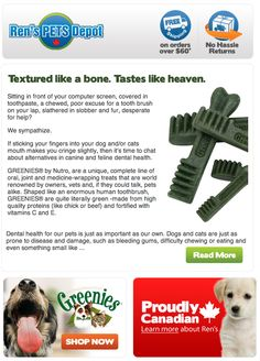 What are Greenies and how do they help our pets? Learn more!