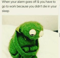 """When your alarm goes off and you have to go to work because you didn't die in your sleep. Memes. Kermit memes. Memes funny whatnot <a href=""""https://hembra.club/category/humor/demotivators"""">click here</a>"""