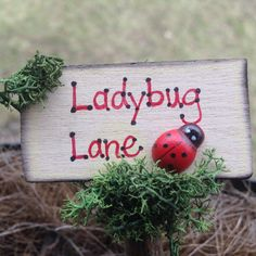 1000 Images About Fairy Garden Signs On Pinterest Fairy Garden Accessories Fairies Garden