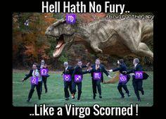 The t-Rex was always my favorite Virgo Libra Cusp, Virgo Traits, Virgo Love, Zodiac Sign Traits, Virgo Horoscope, Funny Virgo Quotes, Virgo Memes, Zodiac Memes, Zodiac Signs Chart