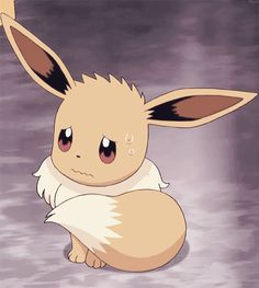 aww a scared eevee is so sad Pokemon Gif, Pokemon Fusion, Pokemon Comics, Pokemon Memes, Pokemon Fan Art, Cool Pokemon, Pokemon Funny, Eevee Cute, Pokemon Eeveelutions